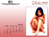 Calendar 2008, Calendar Photography, Delhi, India